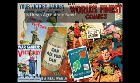 Patrick Arnell:  Rise of Urban Agriculture